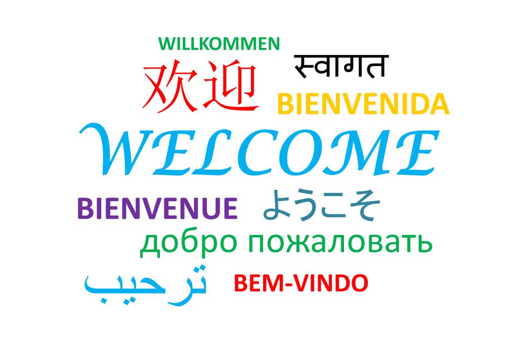 Sprachkenntnisse Titel